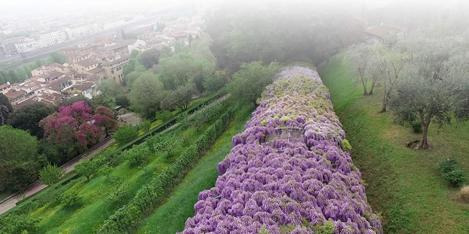 giardino-drone-2